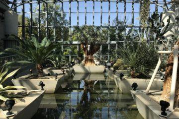 Kisekino Hoshi (Miracle Planet) Botanical Garden
